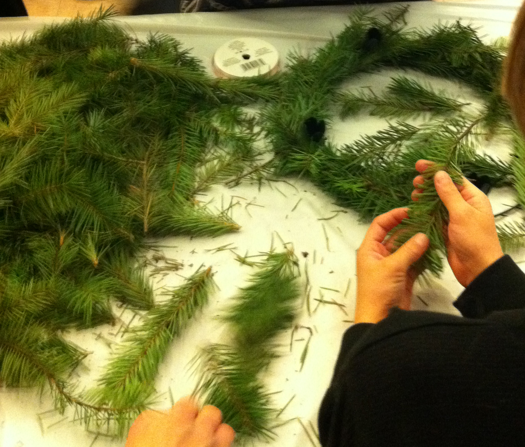 family advent wreath making st paul s